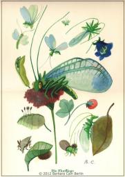Florfliege A4 Poster Handsigniert