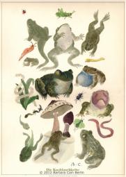Knoblauchkröte Poster Handsigniert- A3